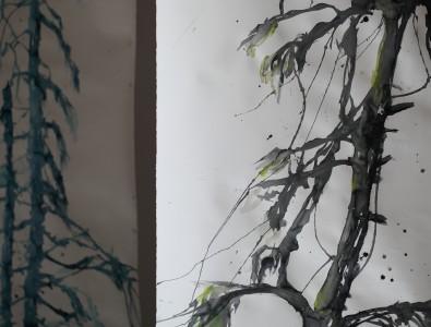 gran-i-kaltiomaa-kalmar-11-web